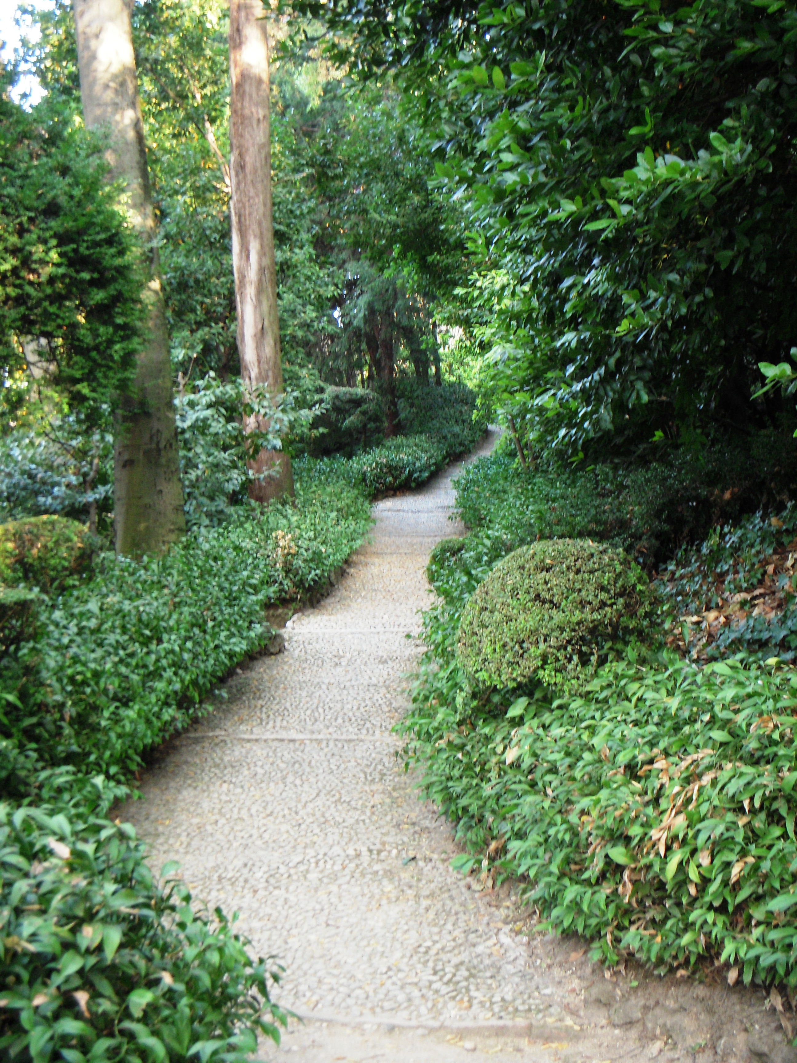 Image result for smooth path