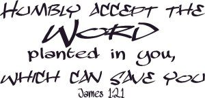 James 1 21