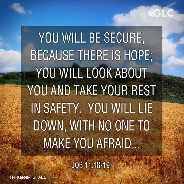 no-one-will-make-you-afraid